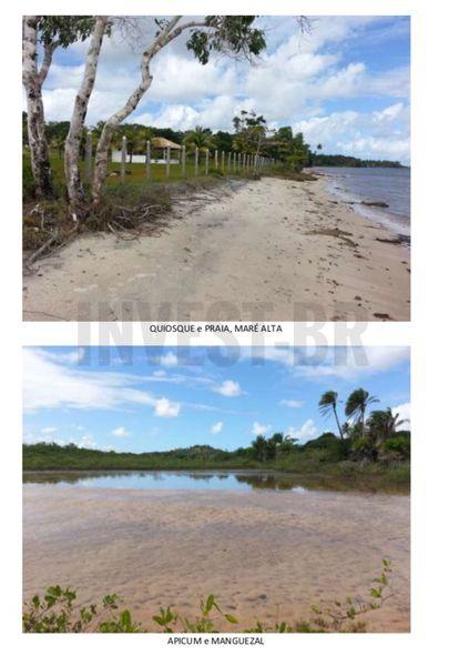 Fazenda em Itaparica, Bahia - BA91001 - 7
