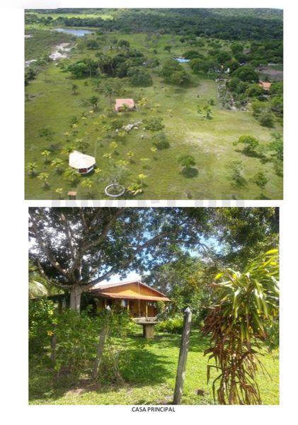 Fazenda em Itaparica, Bahia - BA91001 - 11