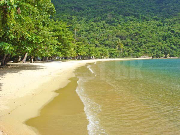 Resort a venda em Angra dos Reis - RJ81003 - 17