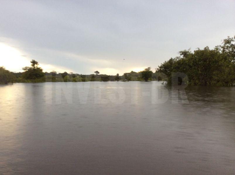 Área em Careiro, Amazonas - AM53001 - 6