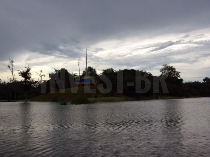 Área em Careiro, Amazonas - AM53001 - 5