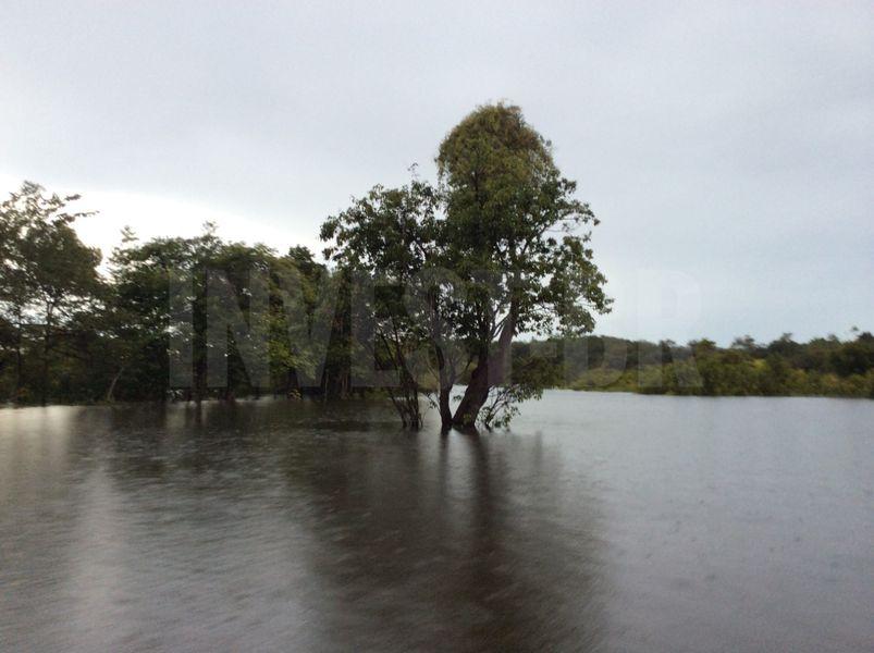 Área em Careiro, Amazonas - AM53001 - 7