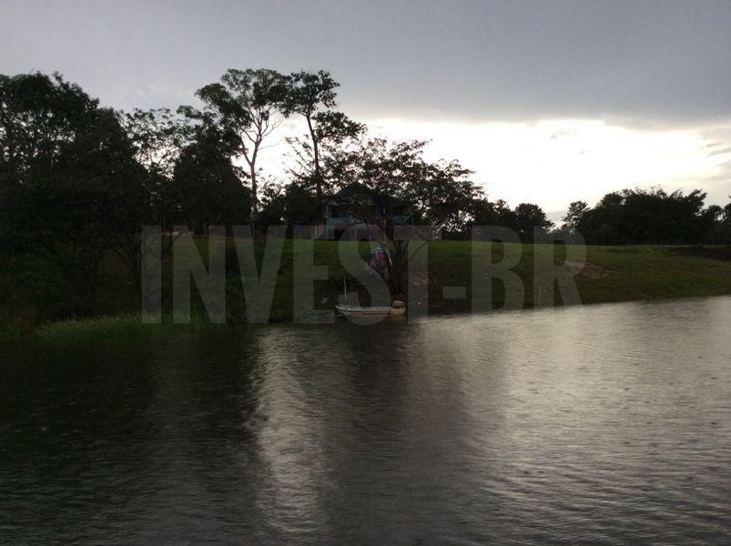 Área em Careiro, Amazonas - AM53001 - 8
