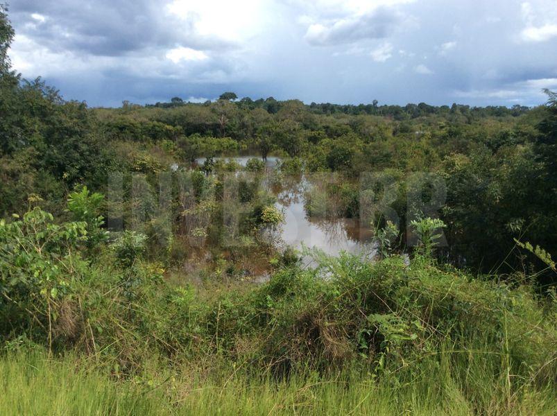Área em Careiro, Amazonas - AM53001 - 19
