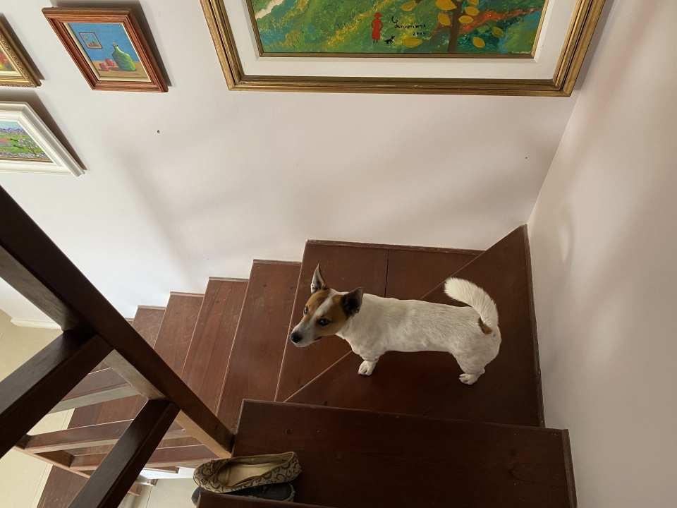 Casa em Condomínio 4 quartos à venda Rio de Janeiro,RJ - R$ 1.500.000 - 30VCASANOVABARRA - 60