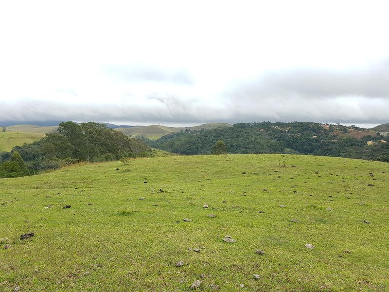 Sítio com 40,000.00 m² com lago, pasto e área para plantação. - stary - 24