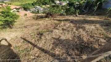 Terreno 980m² à venda Arcozelo, Paty do Alferes - R$ 55.000 - trar55 - 2
