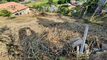 Terreno 980m² à venda Arcozelo, Paty do Alferes - R$ 55.000 - trar55 - 5