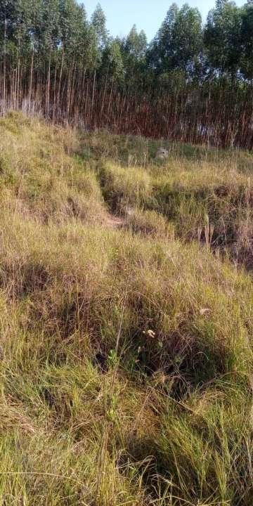 Sítio à venda Zona Rural, Águas de São Pedro - R$ 600.000 - ST005 - 10