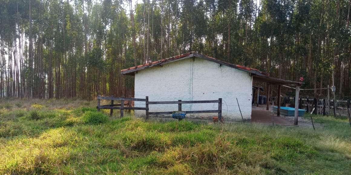 Sítio à venda Zona Rural, Águas de São Pedro - R$ 600.000 - ST005 - 17