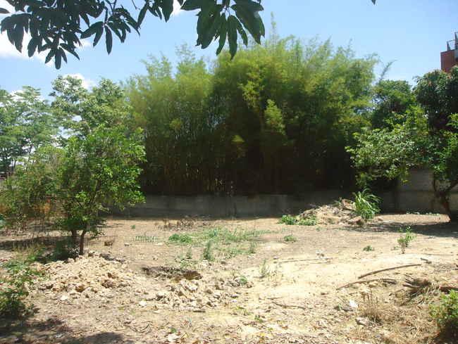 Terreno Comercial Centro,Pedro Leopoldo,MG À Venda - vtr001 - 7