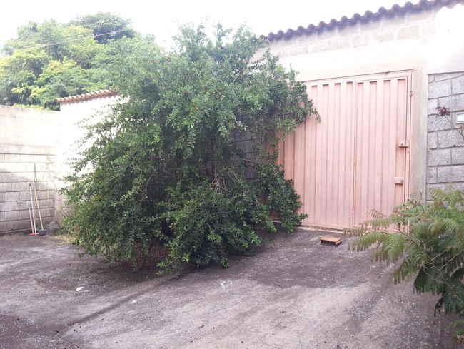 Casa À Venda,5 Quartos - vcs025 - 17